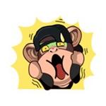 可愛的黑毛猴最新版