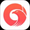 极鹰浏览器app